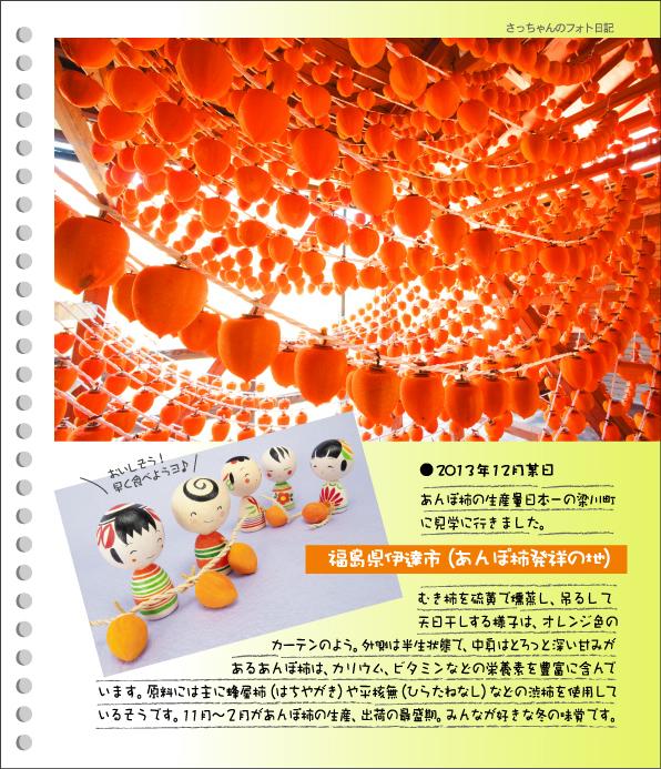 さっちゃんのフォト日記 見事なあんぽ柿のカーテン!●2013年11月某日 あんぽ柿の生産量日本一の梁川町に見学に行きました。むき柿を硫黄で燻蒸し、吊るして天日干しする様子は、オレンジ色のカーテンのよう。外側は半生状態で、中身はとろっと深い甘みがあるあんぽ柿は、カリウム、ビタミンなどの栄養素を豊富に含んでいます。原料には主に蜂屋柿(はちやがき)や平核無(ひらたねなし)などの渋柿を使用しているそうです。11月~2月があんぽ柿の生産、出荷の最盛期。みんなが好きな冬の味覚です。