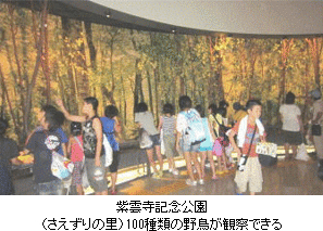 紫雲寺記念公園(さえずりの里)100種類の野鳥が観察できる